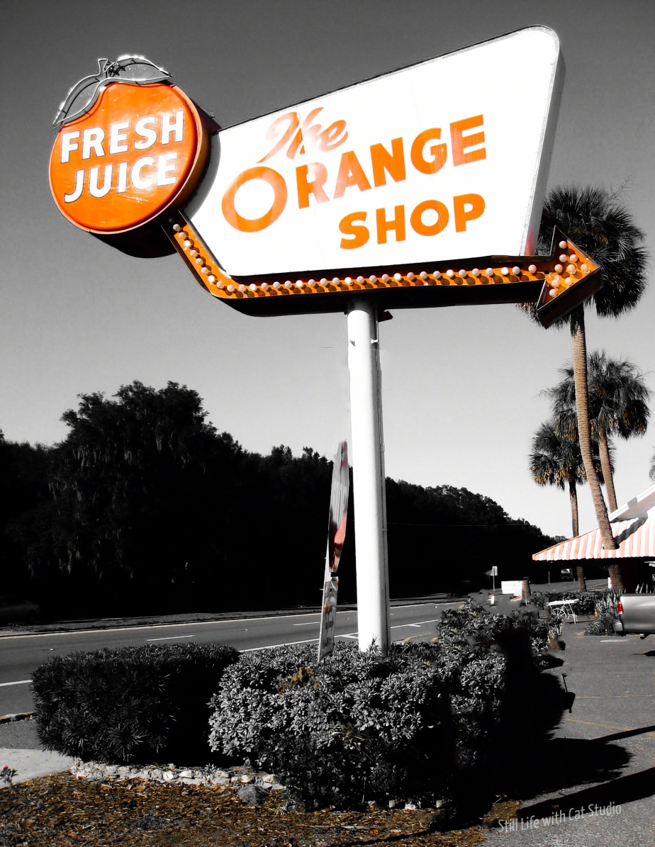 Orange Shop. Citra Florida